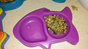 Little plastic dishes for the breeding cages purchased at the dollar store