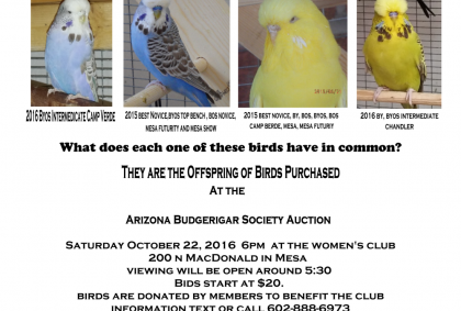 Arizona Budgerigar Society Auction