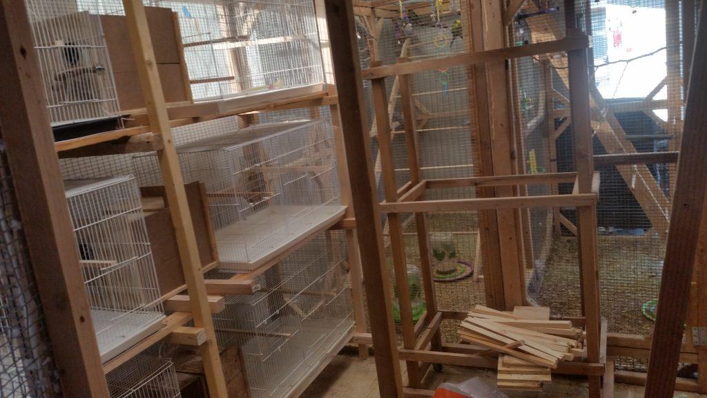 New Breeding room Addition