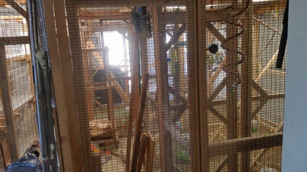 Aviary Room
